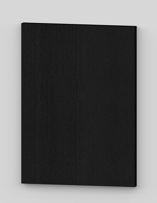 Vertical birch veneer flush door - black tb49
